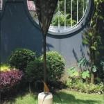 Copper Lamp SL001